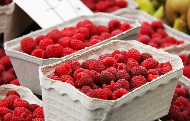 raspberry-606555_640