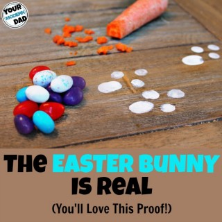 the Easter Bunny is real (you'll love this proof!)