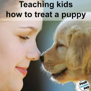 5 ways to teach your kids how to treat a puppy